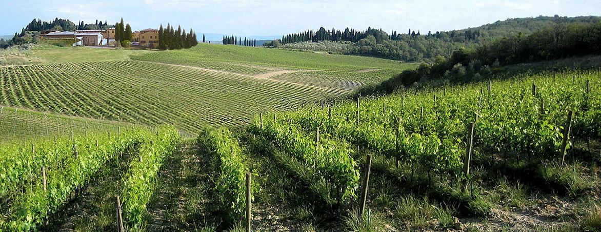 panorama-az.Panzanello1
